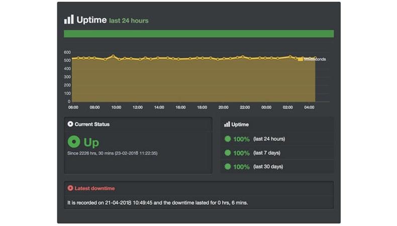 domainracer server uptime